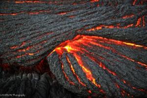 Lava in Royal Gardens