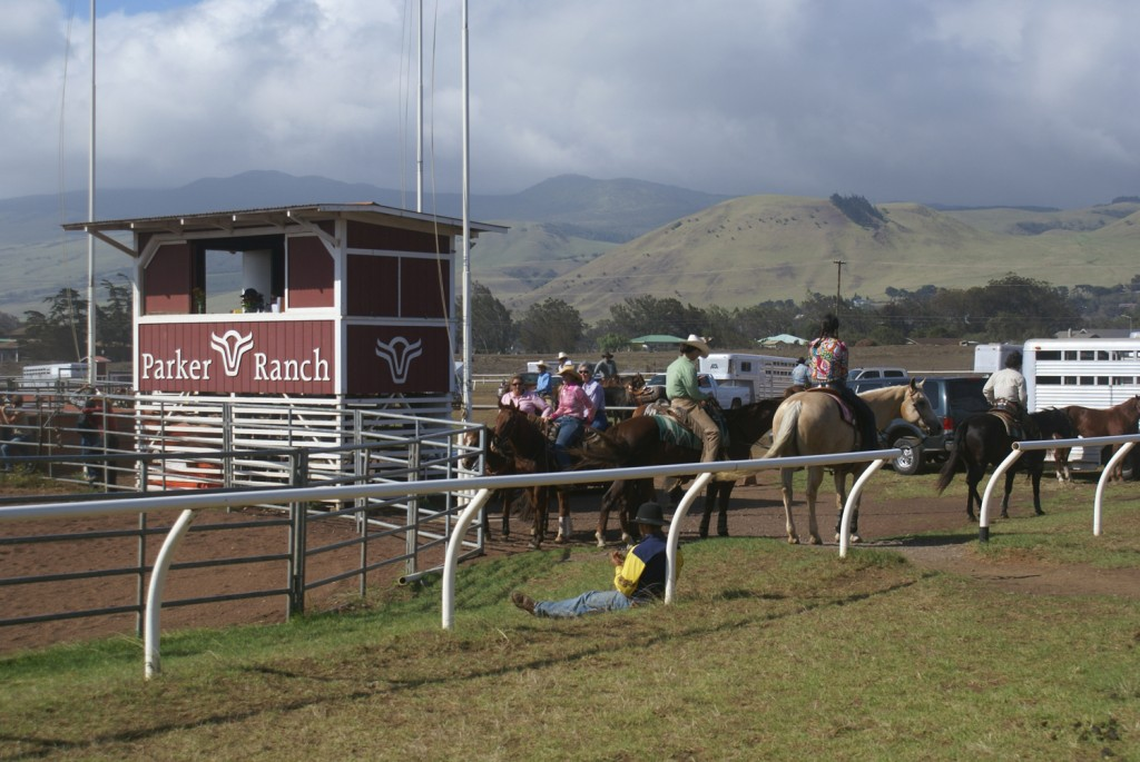 Rodeo Parker Ranch Waimea