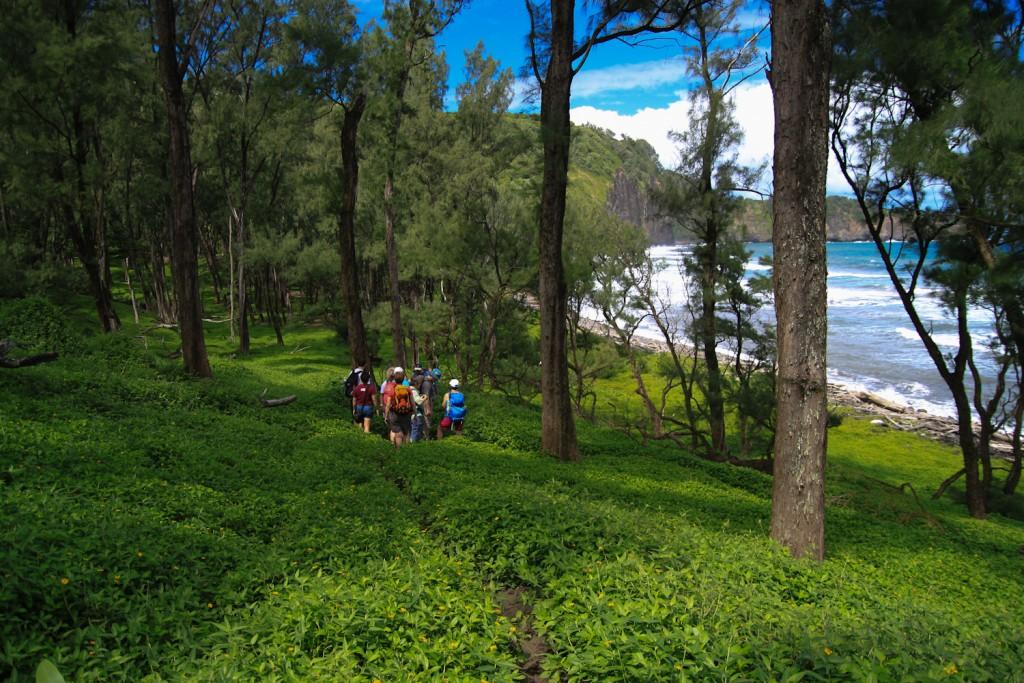 Pololu Valley und Black Sand Beach